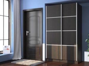 Шкаф купе 2 двери